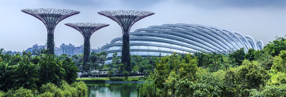 Tieny The Singapore