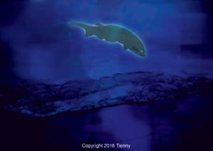 Atlantic Bigeye Sixgill Shark
